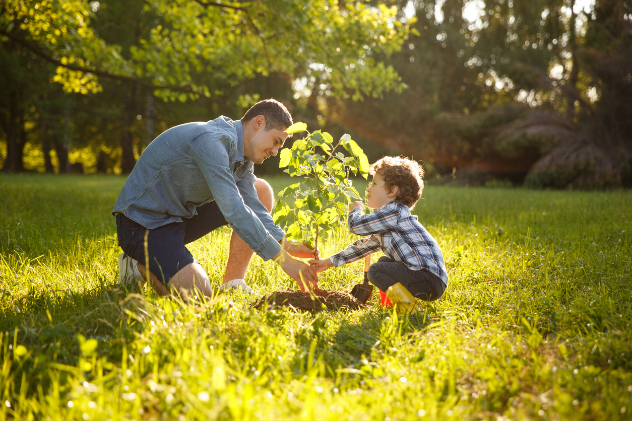 shared use green spaces planting tree father son latino